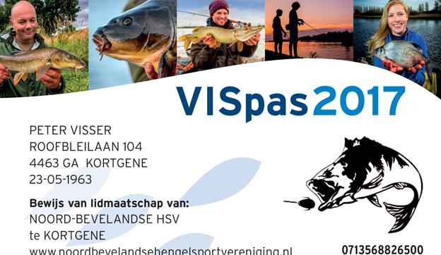 VISpas 2017
