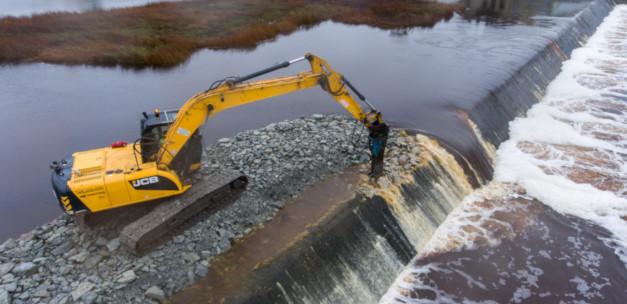Financiële steun voor damverwijderingen