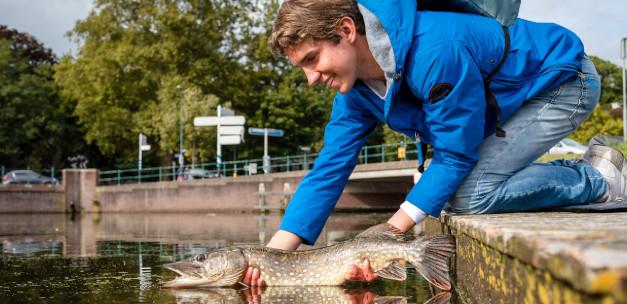 Fisch mitnehmen: Welche Regeln gelten dafür?
