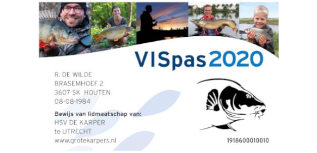 Here it is: the VISpas 2020