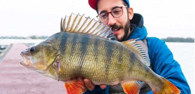 Italian YouTube crew fishing for XL-perch in holland