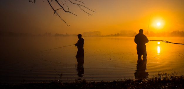 Top-20 fishing destinations in the Netherlands