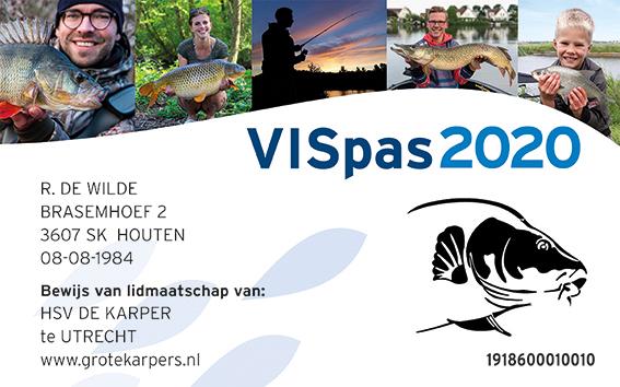 VISpas 2020