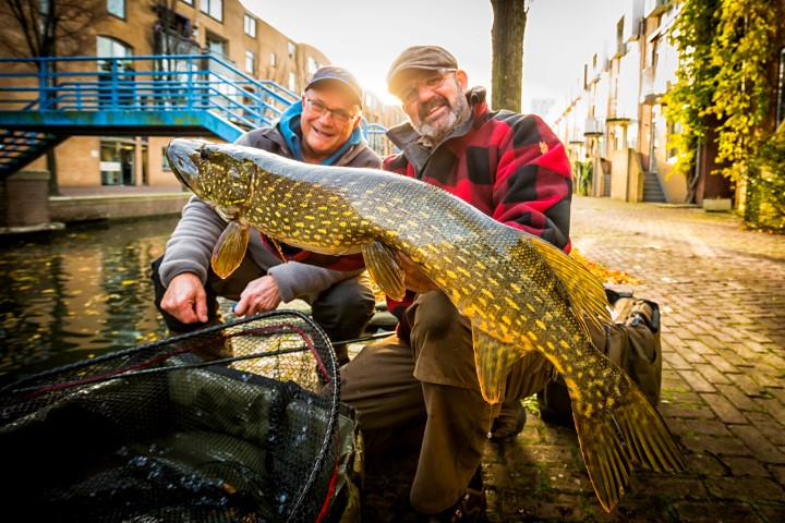 A nice pike caught in the city