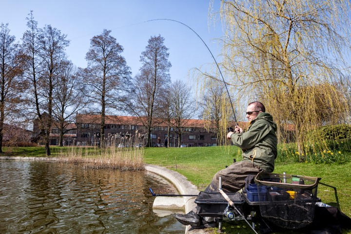 Coarse angling using the method feeder